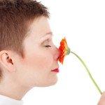 Die Nase – mehr als nur ein Riechorgan